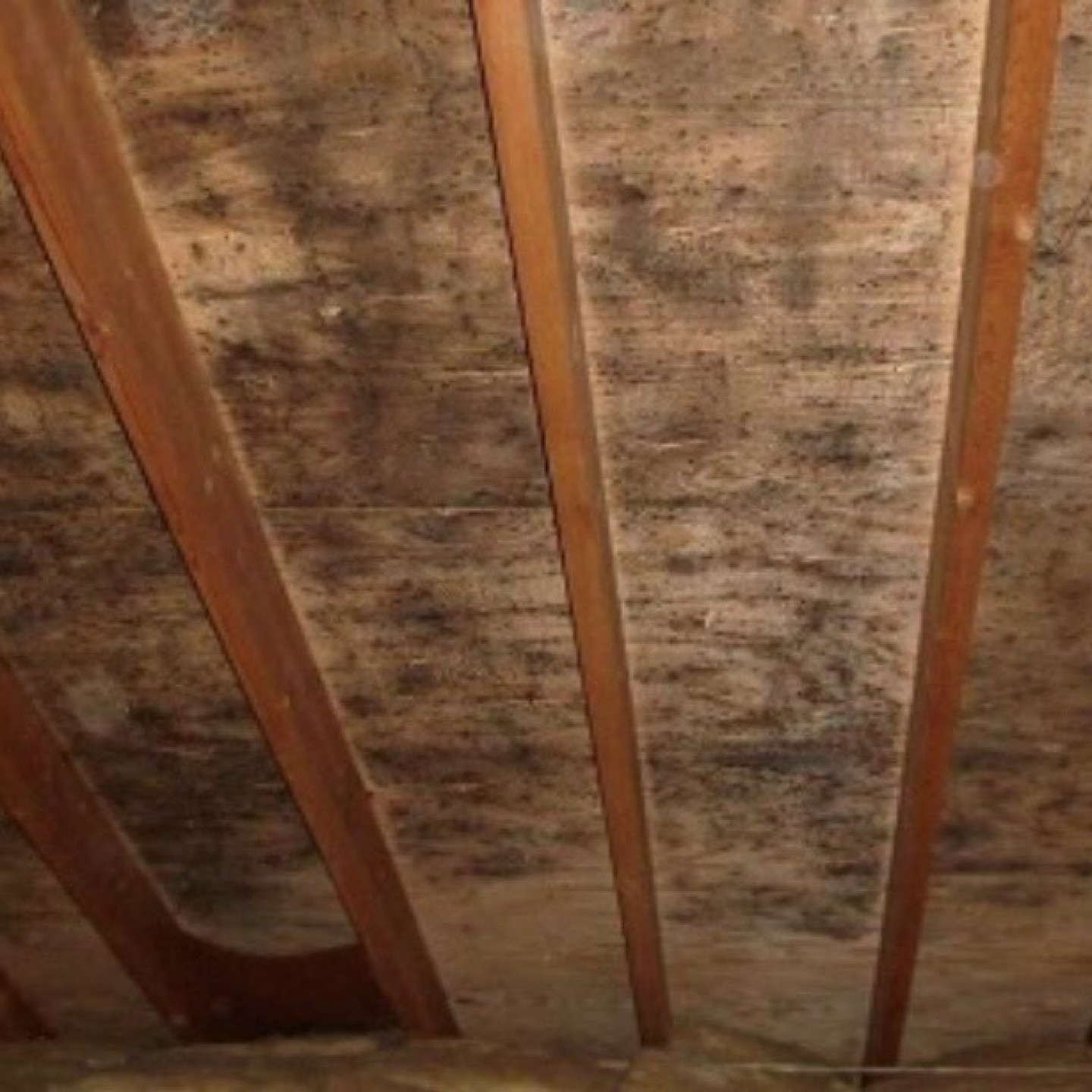 How the attic impacts your comfort and energy bills